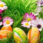 DIY-Frühlingsdeko – Kreative Kleinigkeiten für unser Zuhause