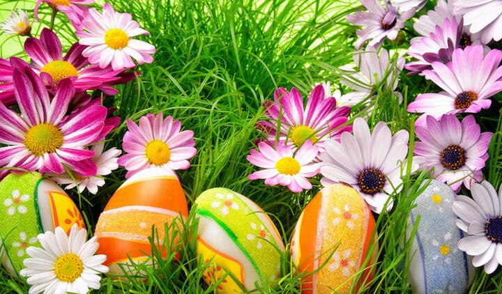 Diy Frühlingsdeko Kreative Kleinigkeiten Für Unser Zuhause