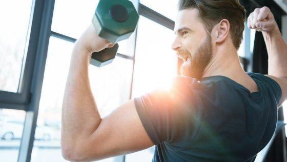 Muskelaufbau – gesundes Leben in einem fitten Körper